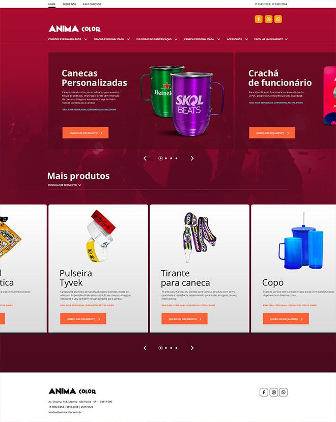 Criação Website Animacolor